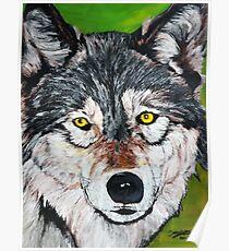 le loup Poster
