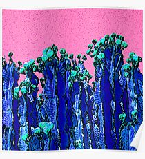 Cartoon Summer Cacti In The Pink  Poster