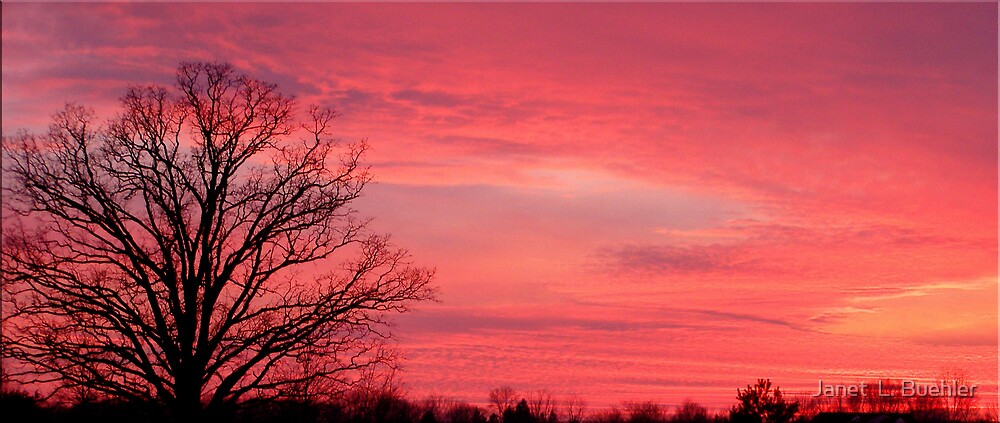SUNSET by Janet  L. Buehler