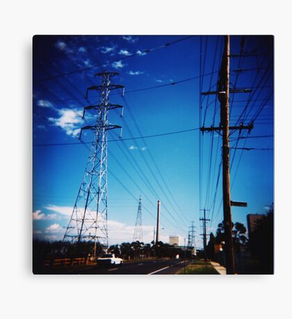 Much of a Muchness Canvas Print