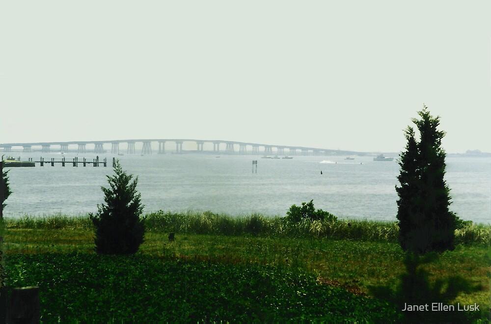 Misty Day on the Bay by Janet Ellen Lusk