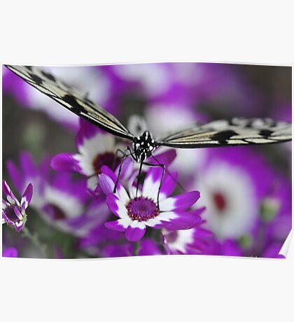 Purple Refueling Station - Caper White Poster