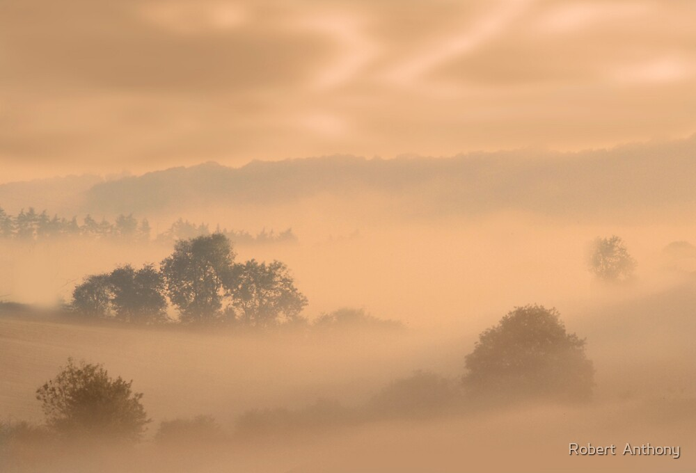 Tinted Fog by Robert  Anthony