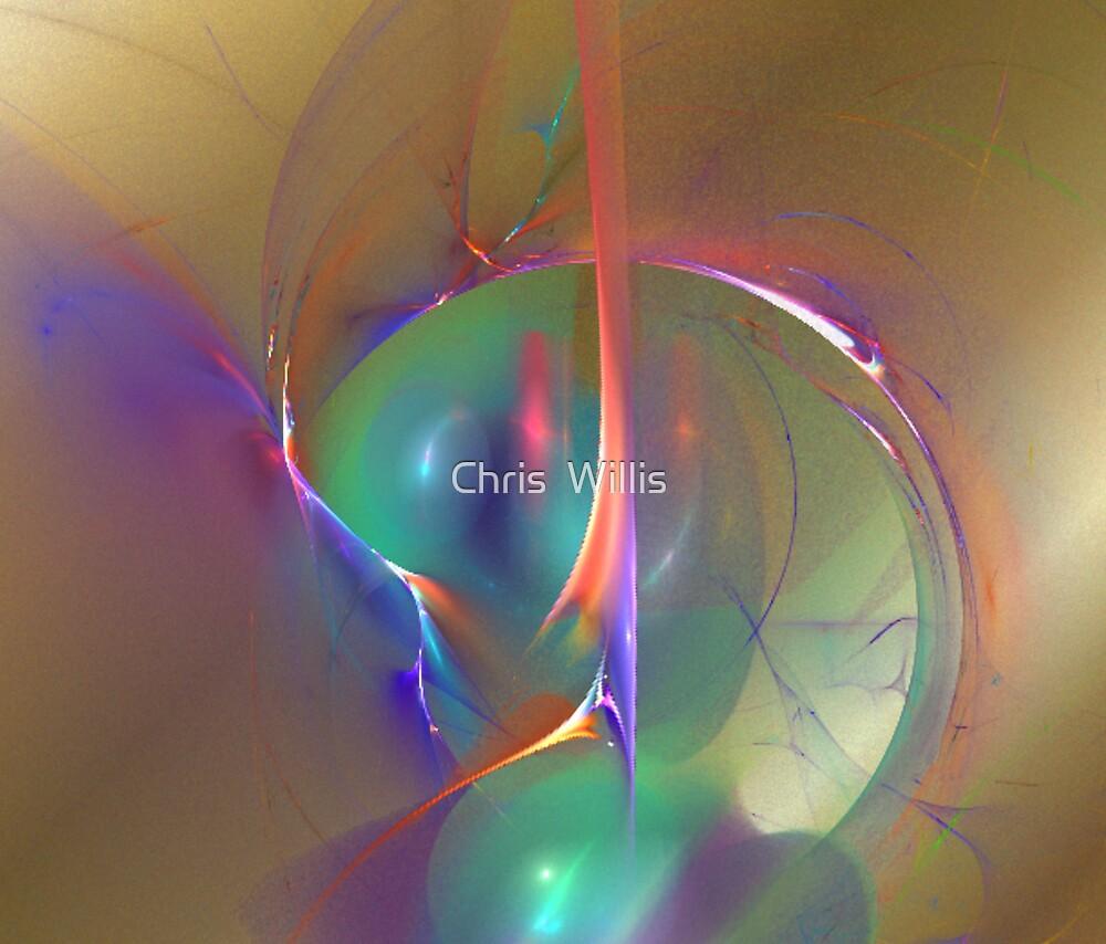 Golden Orb by Chris  Willis
