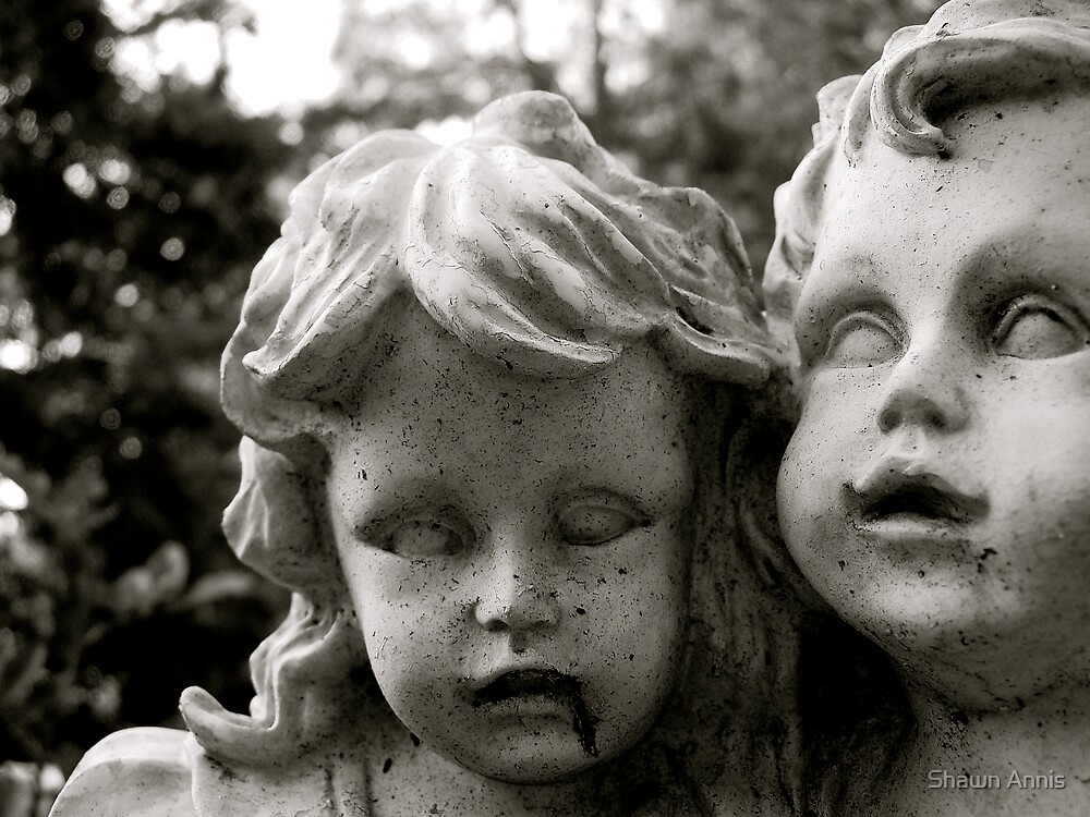 Stone Faced Children by Shawn Annis