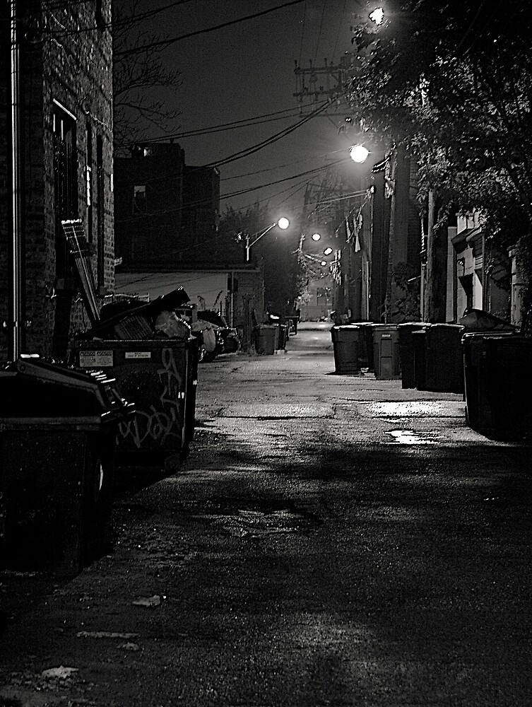 STREET SMART by martin venit