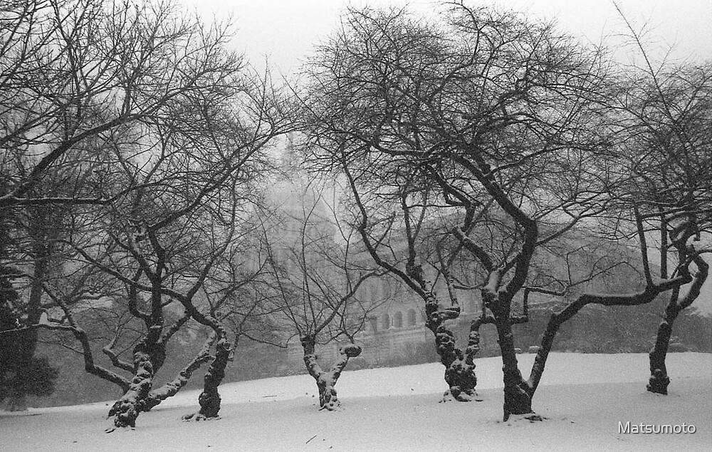 Winter Dance #2a by Matsumoto