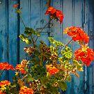 """Greek Colors"" Calendar 2015 - May by Andreas Theologitis"
