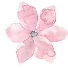Pretty little pink flower watercolour by Sandra O'Connor