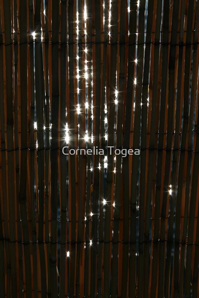 sparkle light, sparkle bright by Cornelia Togea