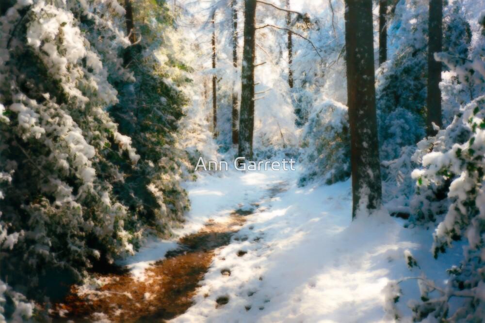 Snow In The Park by Ann Garrett