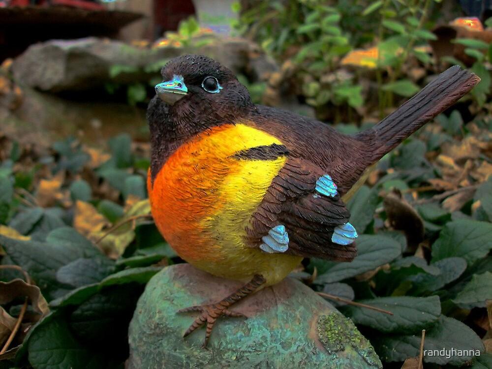 Bird by randyhanna