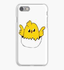 Cute Easter Egg iPhone Case/Skin