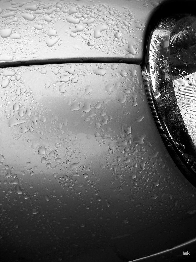 wet car by liak