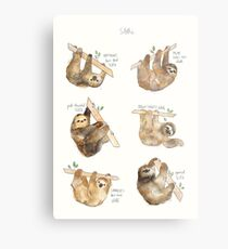 Sloths Metal Print