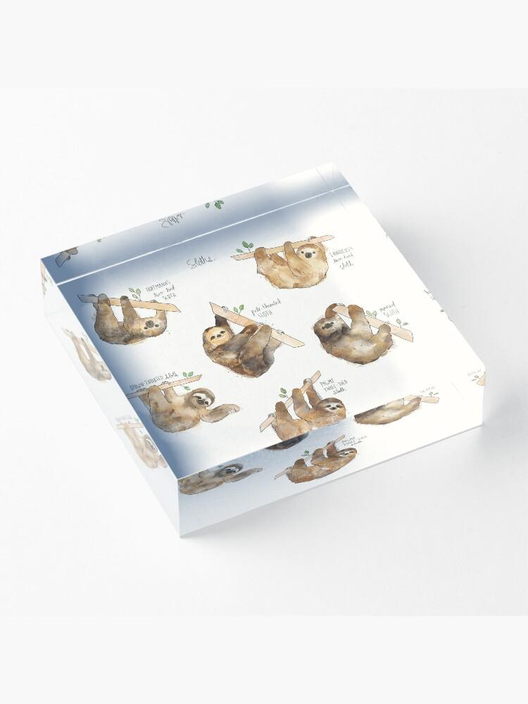 Alternate view of Sloths Acrylic Block