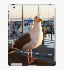 Seagull iPad Case/Skin