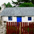 Irish Cottage with Blue Door, Inch Island, Donegal, Ireland by Shulie1