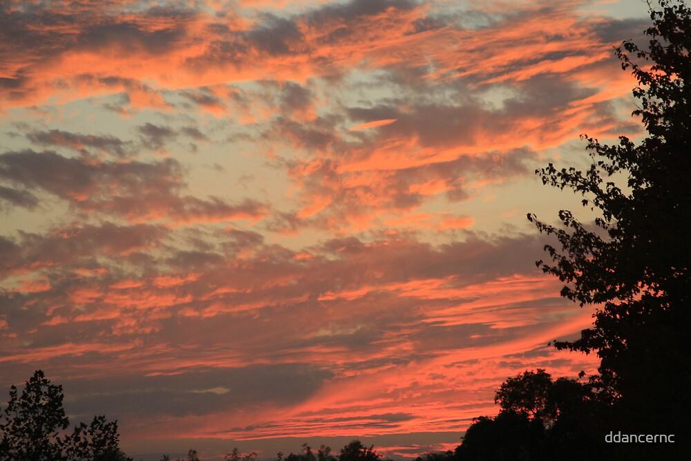 Sunset In Charlotte by ddancernc