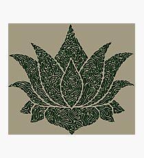 Lotus Doodle - Dark Green Photographic Print