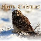 Merry Christmas by Gene Praag