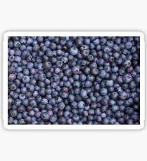 Blueberries pattern Sticker