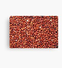 A close up image of red quinoa Canvas Print