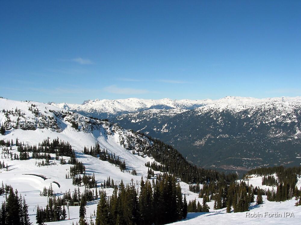 Canada Mountain View by Robin Fortin IPA