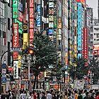 Tokyo - Chaos Crossing by sparrowhawk