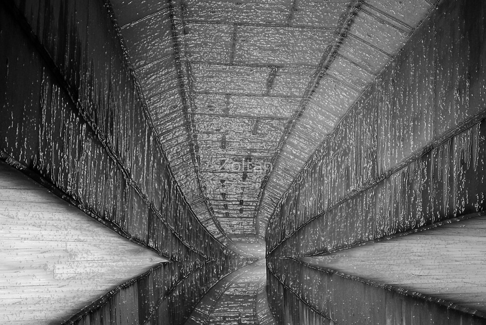 The Tunnel by Zoltan