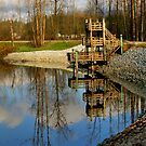 Reflections by MaluC