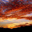 Blood Red Sunset by Daniel J. McCauley IV