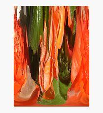 melting poppies Photographic Print