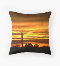 Softened Suburbia Throw Pillow
