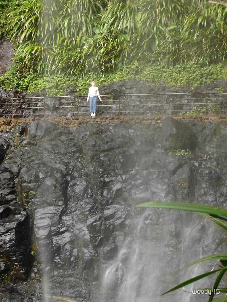 Rain Forrest Falls by woody45