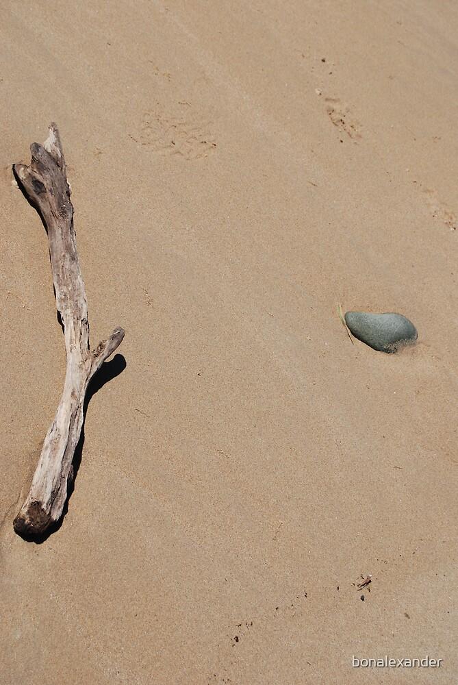 Stick & Rock by bonalexander