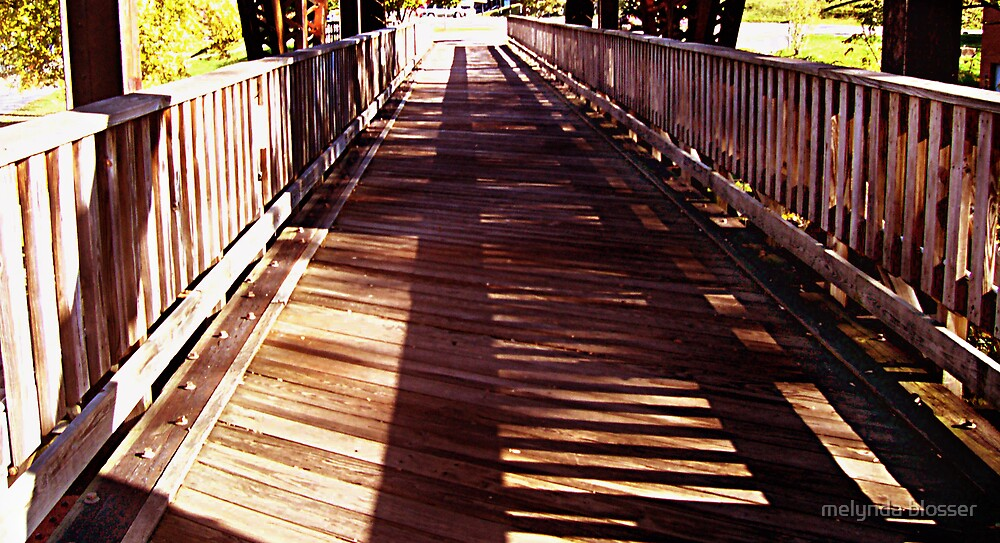 bridge of shadows by melynda blosser