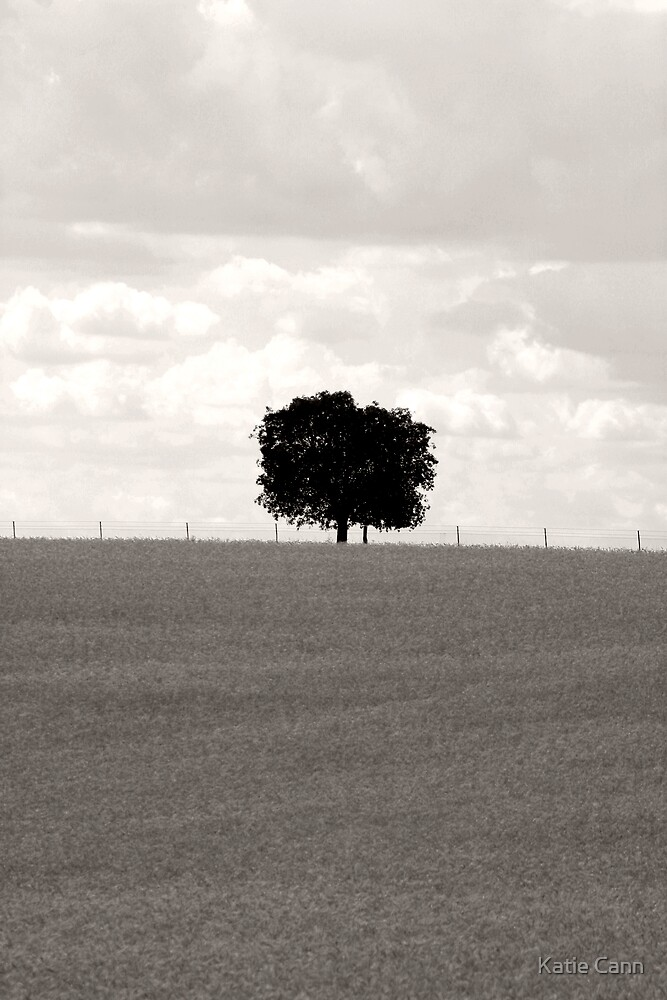 One Tree Hill by Katie cann