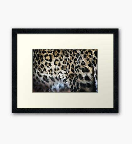 Hide  Framed Print