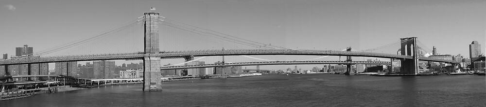 Brooklyn Bridge by grimbomid