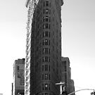 Flat Iron Building by grimbomid