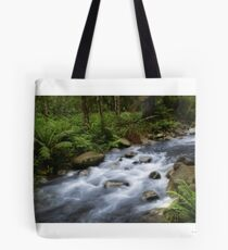 2 Days of rain Tote Bag