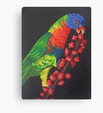 Rainbow Lorikeet #2 Canvas Print