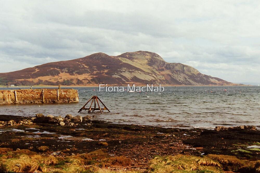 Holy Isle by Fiona MacNab