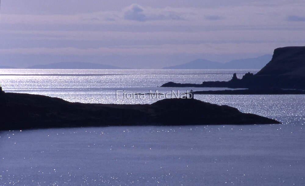 Sparkling seas, Duirinish, Isle of Skye by Fiona MacNab