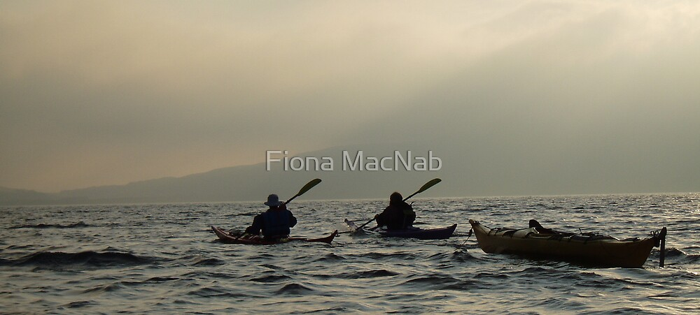 Homeward bound by Fiona MacNab