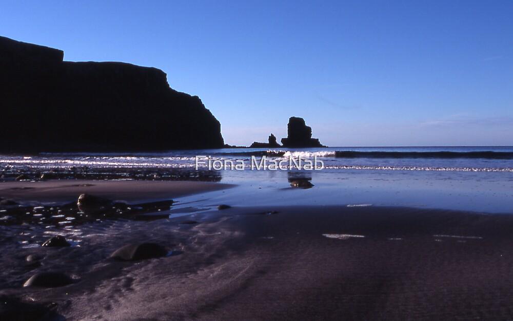 Talisker Bay by Fiona MacNab