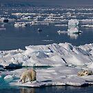Ice Retreat by Steve Bulford