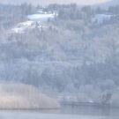 columbia river and snow by Dawna Morton
