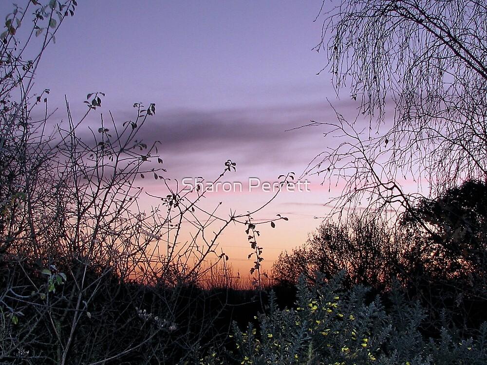 Sunrise (1) 24-11-07 by Sharon Perrett